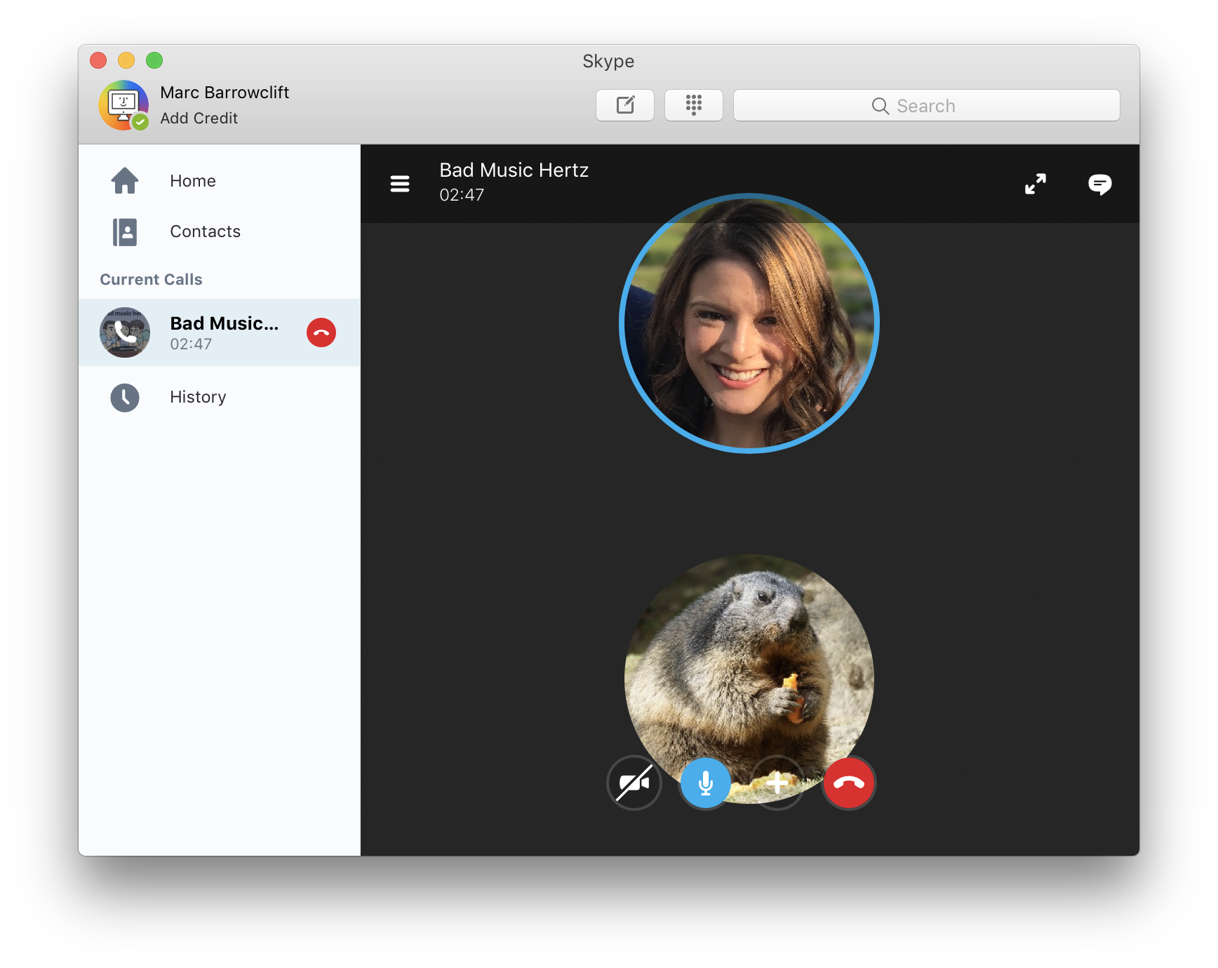 Screenshot of a Skype window with Aimee's avatar as a normal picture and Michael's as that of a fat marmot eating a Cheeto